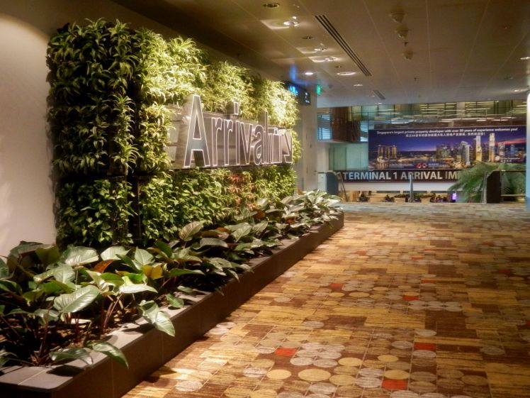 singapore airport (5).JPG